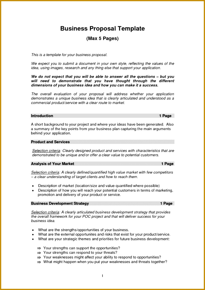 Business Proposal Templates Examples 968684