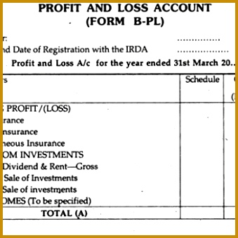 7 Profit And Loss Account Formats In Excel 339339