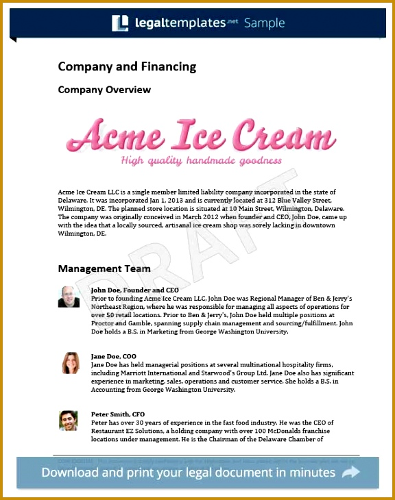 Acme Business plan template 730576