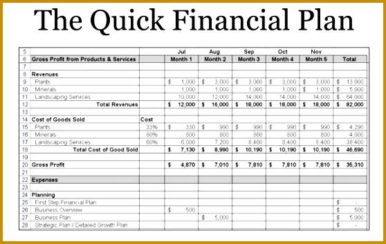 Business Plan Financial Statements Template Help With Business Plan Financials Ideas 353558