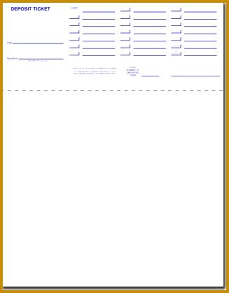 CheckMark Inc Get Checks MICR Printing Blank Checks for CheckMark Payroll and MultiLedger 418327