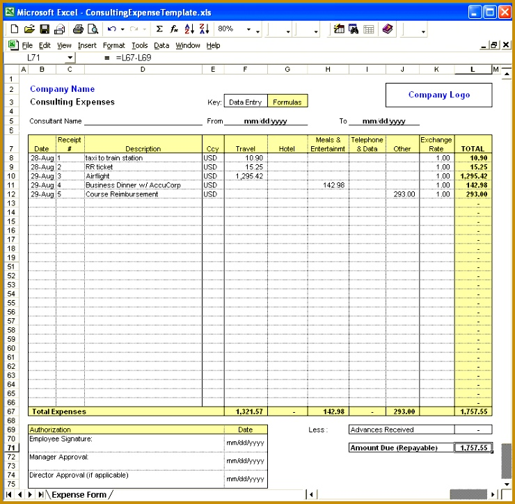 excel expense 724740