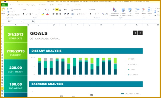 t and exercise journal template for excel 2013 1 580x355 330539