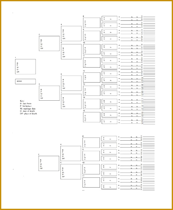 family tree chart template lukex co Blank Tree Diagram 558678
