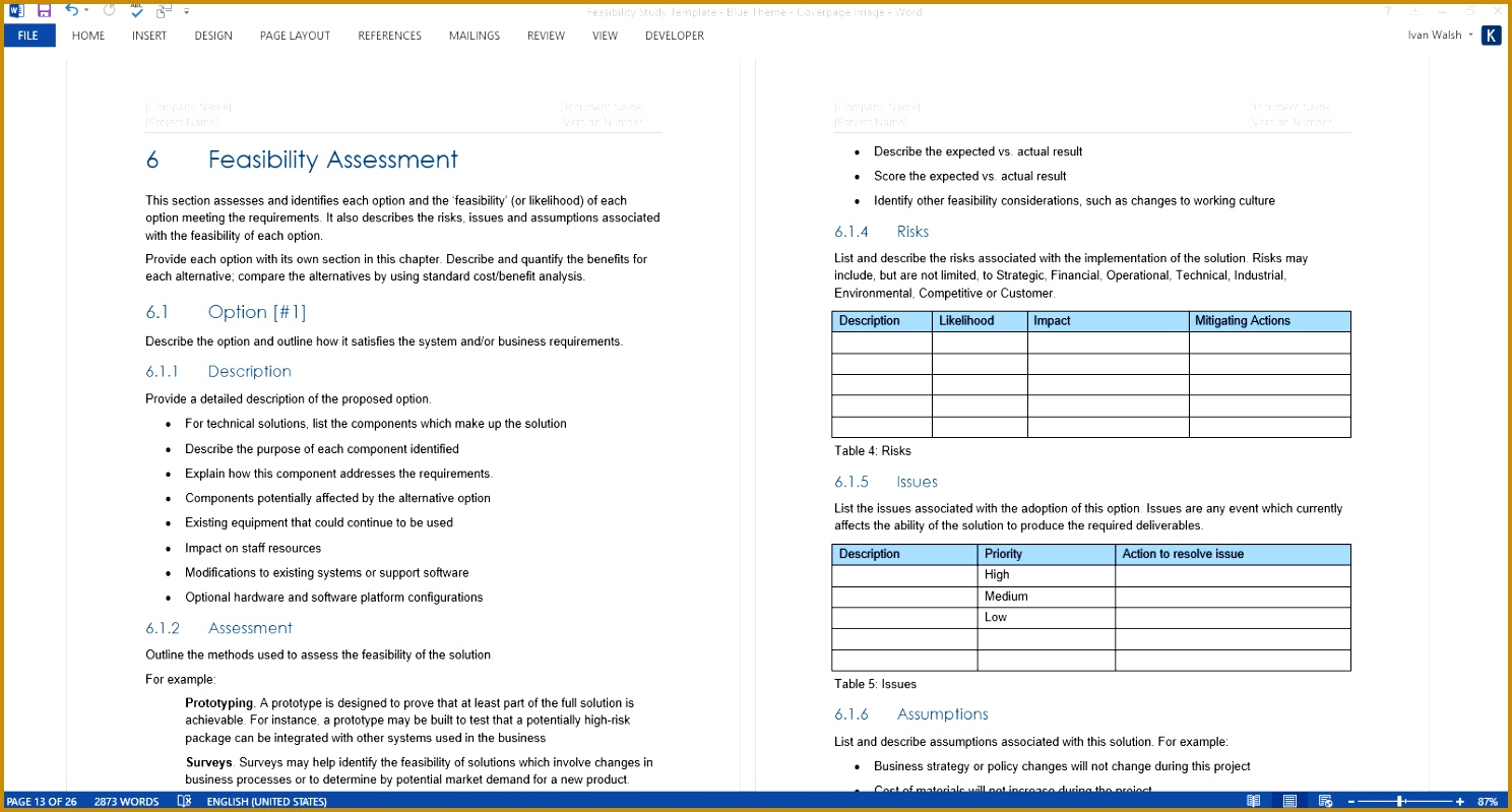 Feasibility Study Template Blue Theme 7991488