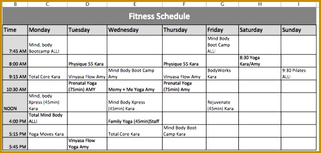 Fitness Schedule Template 312653
