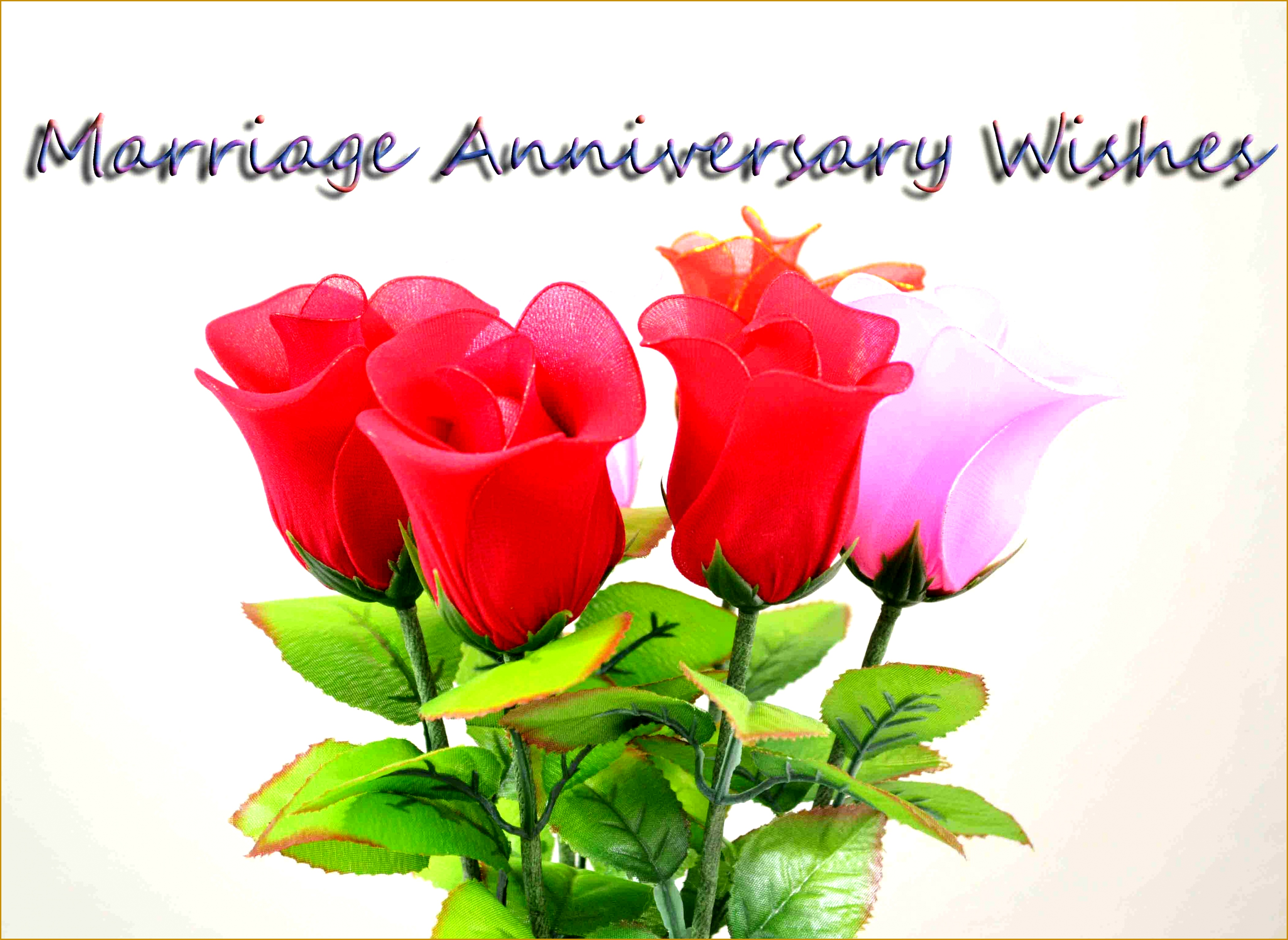 best happy wedding anniversary wishes images cards greetings photos for husband wife 28563911