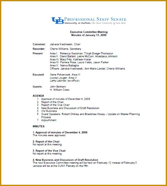 meeting summary template 604544