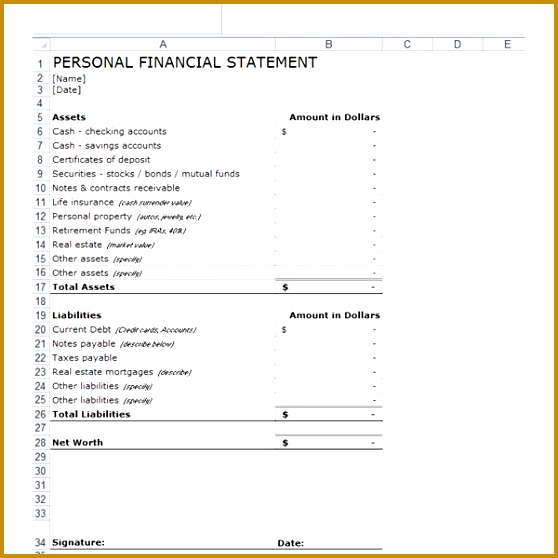 Personal Financial Statement Templates 9 Download Free 558558