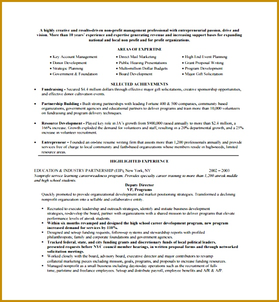 Sample Non Profit Proposal Template Jpg 604558