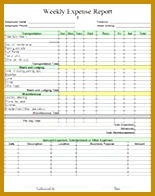 free printable business templates weekly expense report 155196