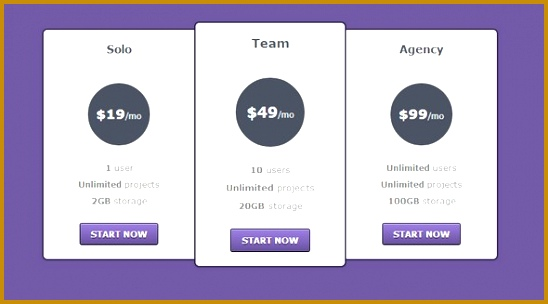 Checkout css Pricing Table 304548