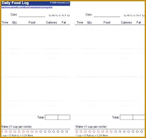 daily food log 465442