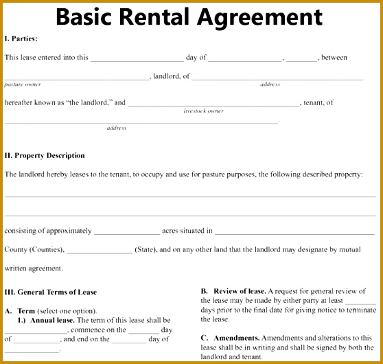 basic rental agreement or residential lease 558530