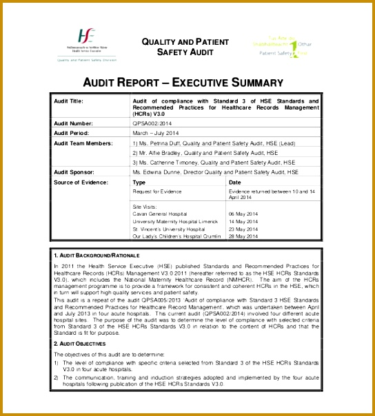 5 Summary Report Template
