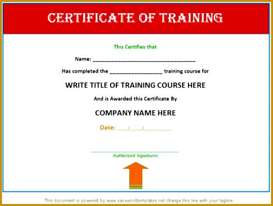 6 Training Certificate Template Fabtemplatez