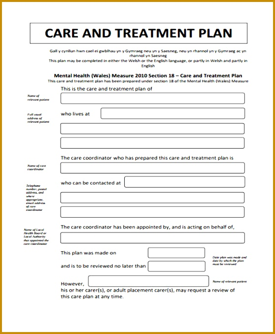 Treatment Care Plan 558678
