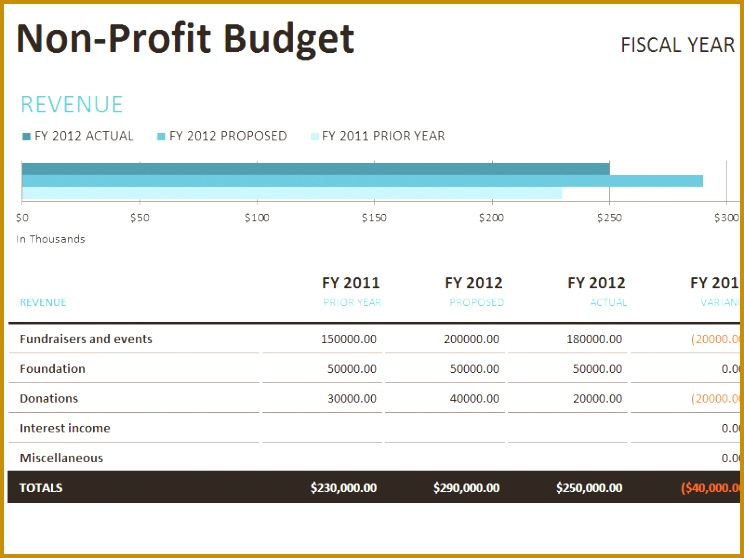 4 Weekly Not for Profit Budget Template