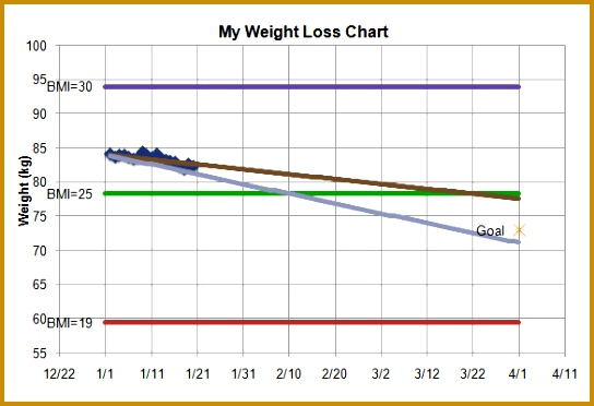 Sample Weight Loss Chart Template Kgs 544372