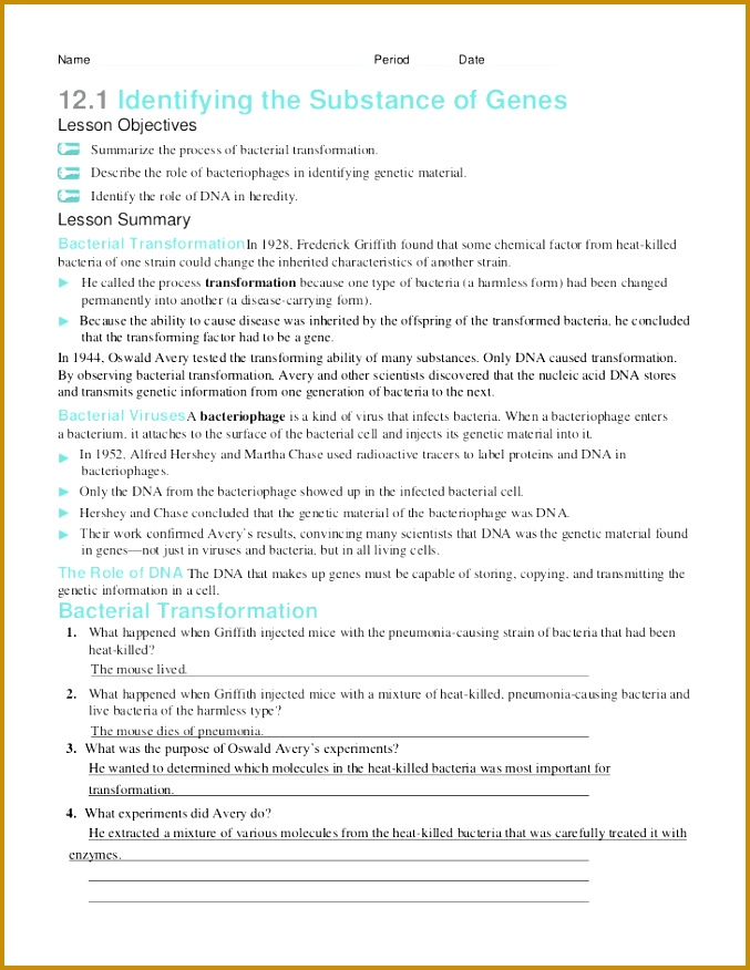7 13 1 Rna Worksheet Answers | FabTemplatez