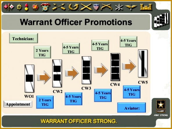 14 Warrant ficer Promotions 445593