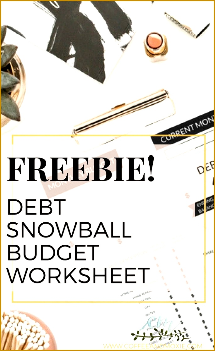 Debt Snowball Bud Worksheet 1116684