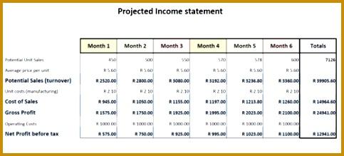 Business Financial Plan Template Business Financial Plan In e Statement 483219