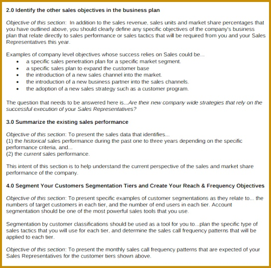 Sales Business Plan Template 539544