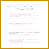 cell transport study guide answers 186186