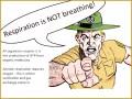 6 Cellular Respiration Worksheet
