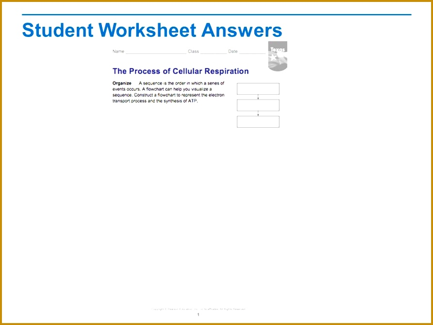 25 Student Worksheet Answers 669892