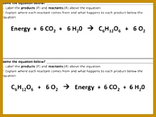 synthesis and Cellular Respiration parison with Answer Key 219164
