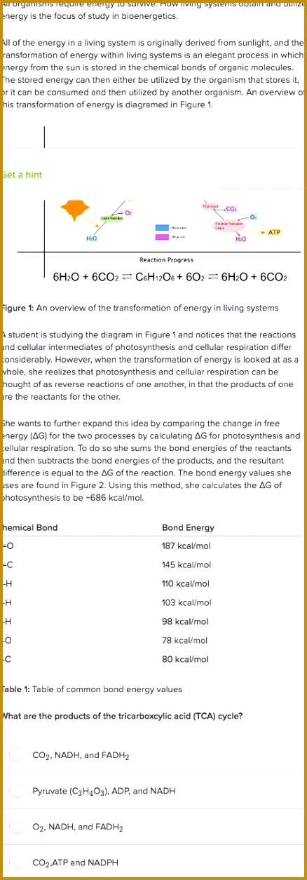 Free energy photosynthesis and cellular respiration practice 1255438