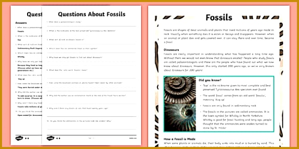 Year 3 Fossils Differentiated Reading prehension Activity 292585