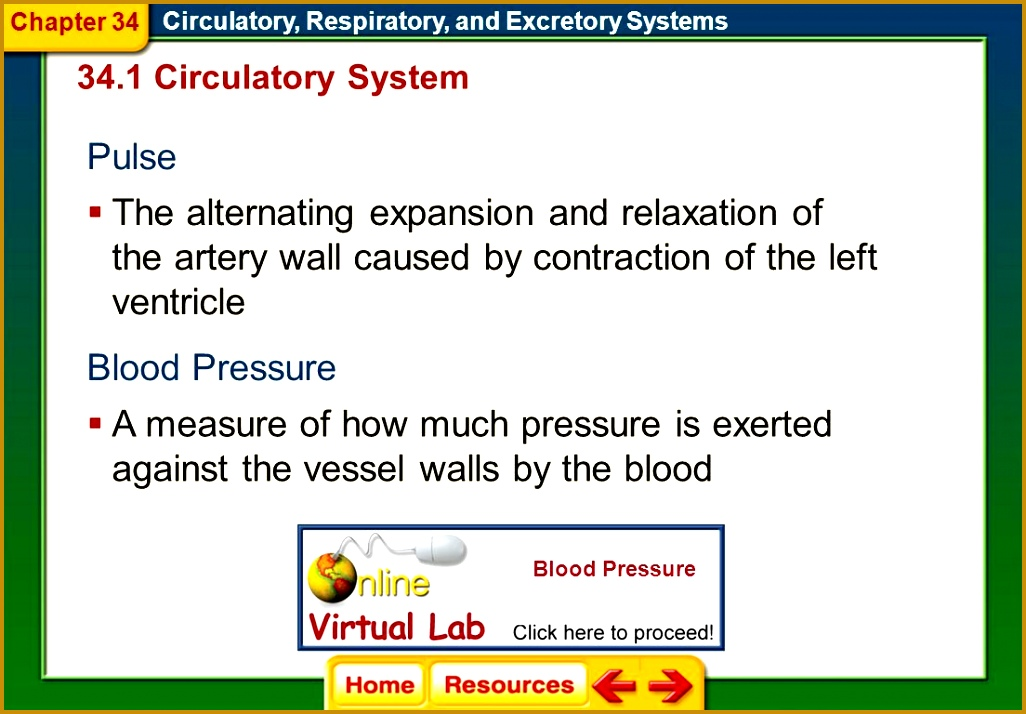 Chapter 34 Circulatory Respiratory and Excretory Systems 34 1 Circulatory System Pulse 7141026