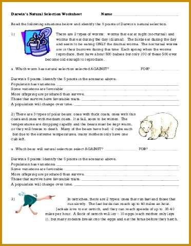 Evolution By Natural Selection Worksheet Leafsea 479372