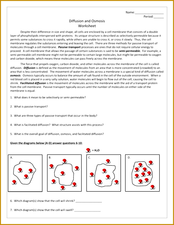 Facilitated Diffusion Worksheet Switchconf 952735