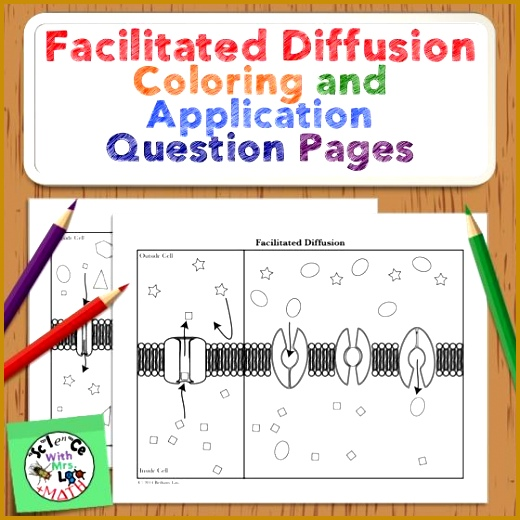 Best 25 Facilitated diffusion ideas on Pinterest 520520