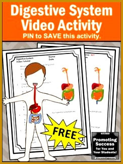 This FREE printable digestive system science worksheet and video will supplement your teaching human body systems 325244
