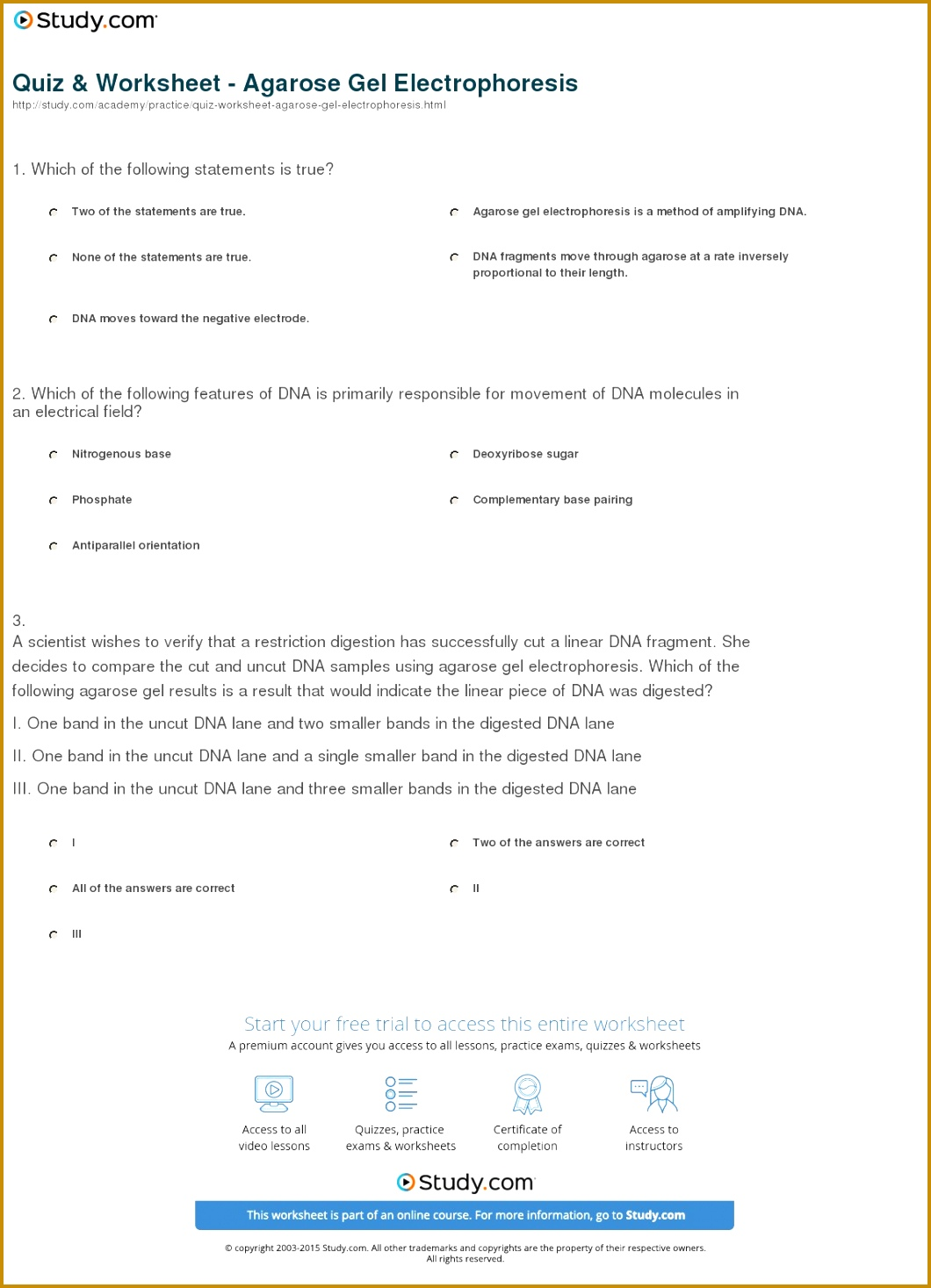 Dna Base Pairing Worksheet Answers 83440 Dna Structure Teacher Guide