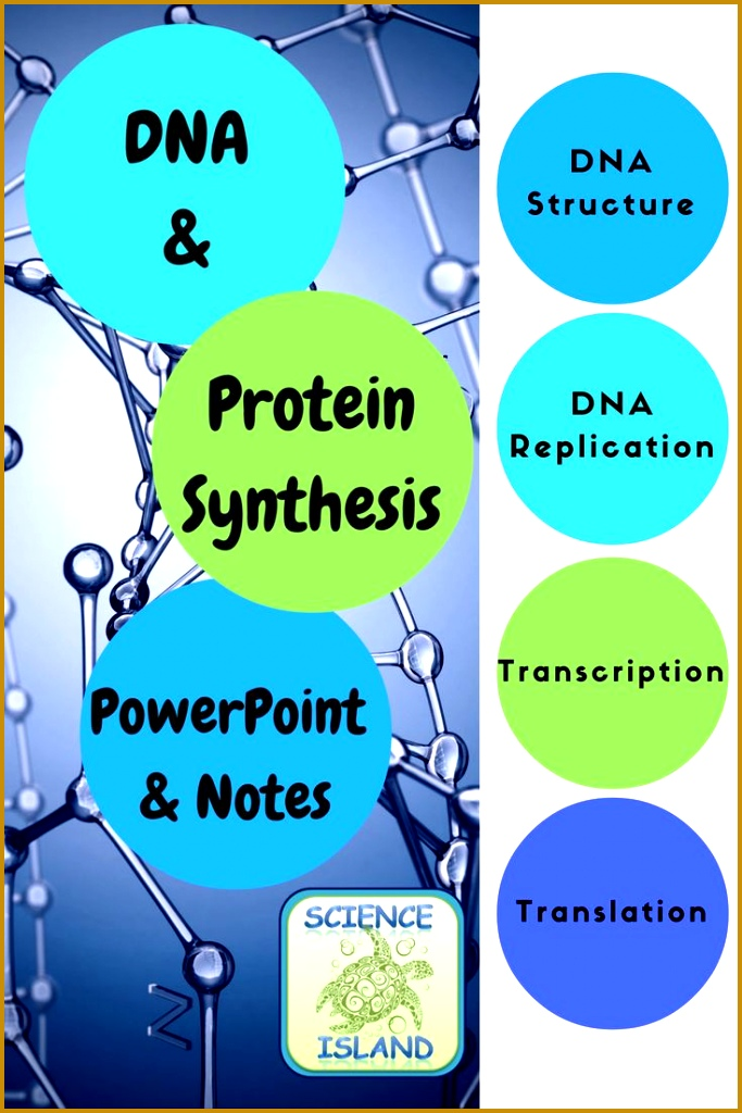 Biology PowerPoint and Notes Over 75 slides and 3 versions of student notes cover DNA 1024683