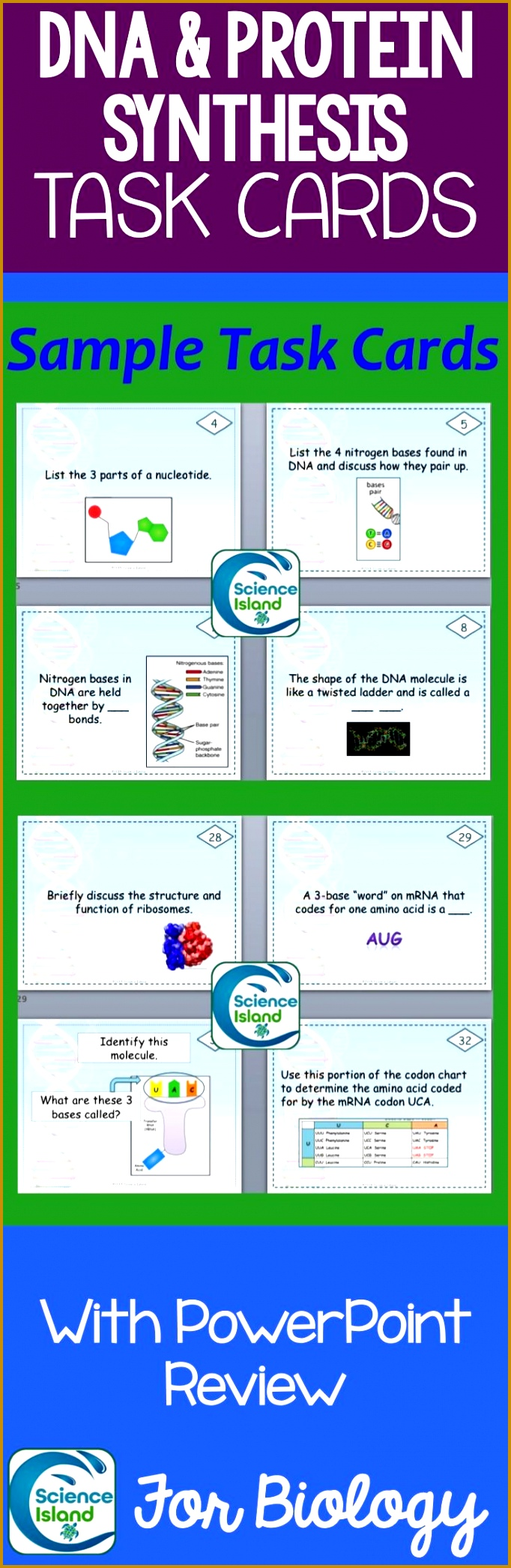 DNA and Protein Synthesis Task Cards with PowerPoint Review 2091682