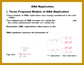17 pages Lecture 17 Replication 129167