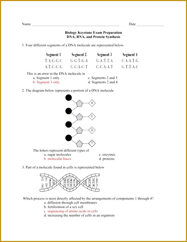 100 [ Dna The Molecule Heredity Worksheet ] 952735