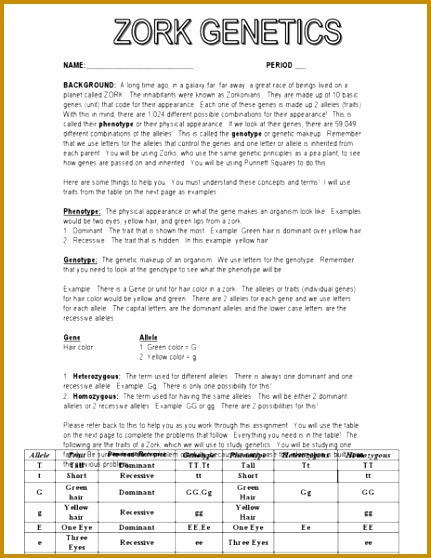 5 Genotype And Phenotype Worksheet Answers Fabtemplatez