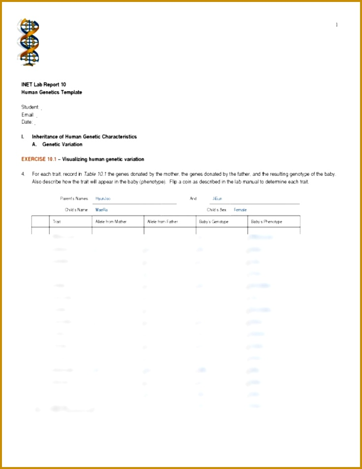 5 Genotype and Phenotype Worksheet Answers | FabTemplatez