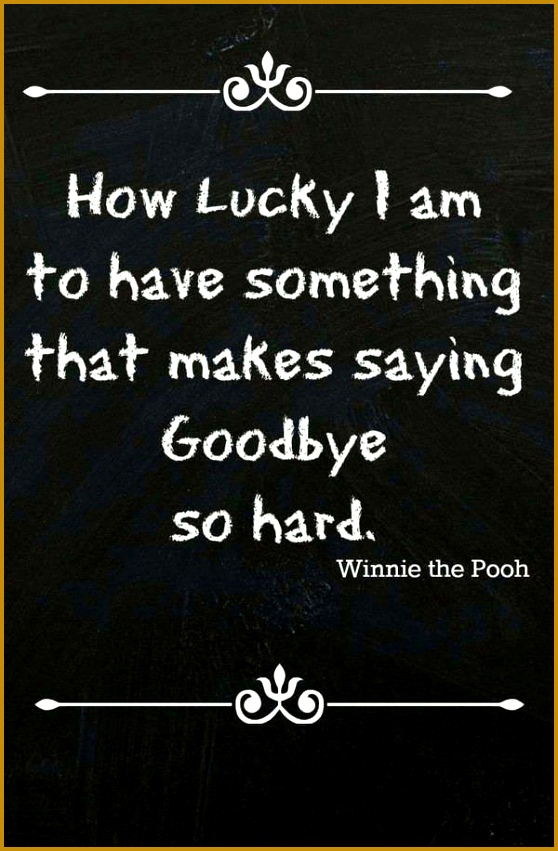 33 Inspirational and Funny Farewell Quotes 851558