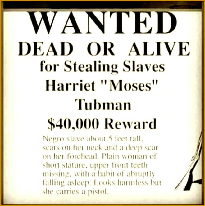 Go Harriet Moses Tubman 664660
