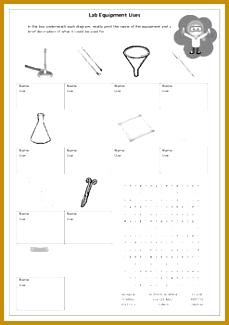 Laboratory Equipment worksheets 325229