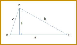 Acute triangles 186318